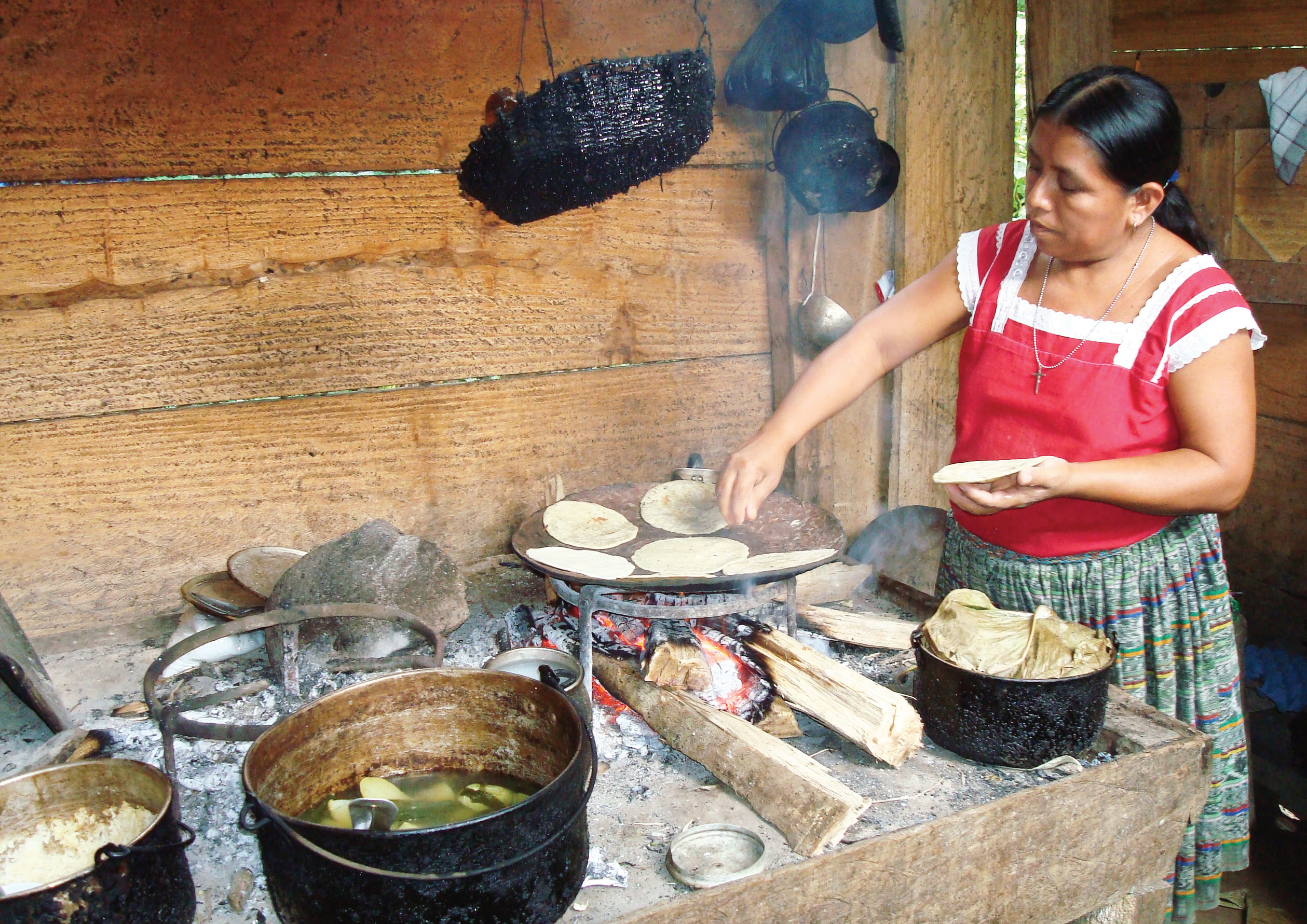 Right to food and the situation of human rights defenders in Guatemala