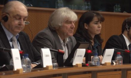 "Video of the Conference: ""Aid to the private sector: promoting responsible investments?"""