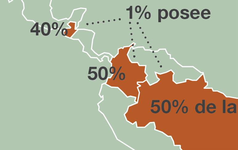 Infografía Acaparamiento de tierras