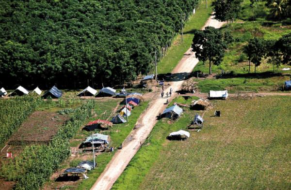 Organizaciones y redes internacionales demandan poner fin a los desalojos y extrema violencia contra comunidades campesinas en Bajo Aguan, Honduras