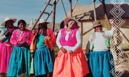Recommendations to the European Union and its Member Statesto promotethe rights of indigenous peoplein their relations with Latin America