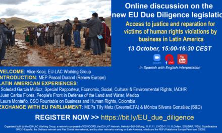 Online discussion on the EU Due Diligence legislation